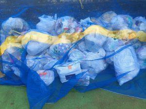 ゴミ捨て場のゴミ
